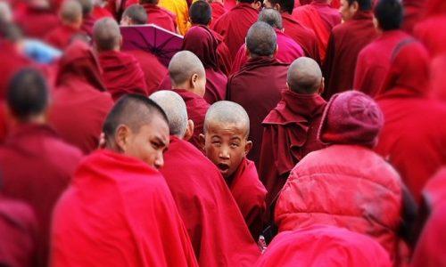the-monks-martinposta-picsabay
